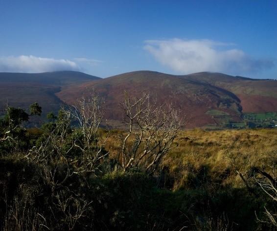 south dublin mountains