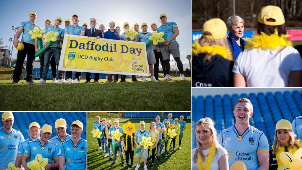 Crowe Horwath & UCD Rugby support Daffodil Day 2018